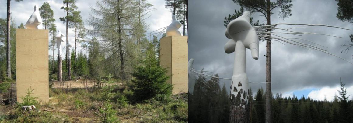 Pinus_Silvetris_Tore_Reisch_Bymarka-3